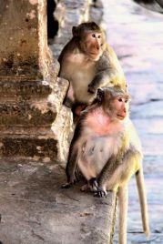Angkor Wat (50)