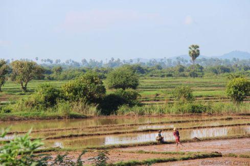 Battambang Divers (1)