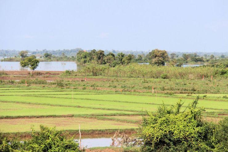 Battambang Divers (2)