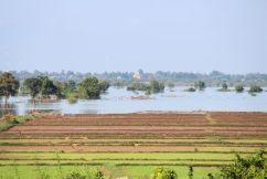 Battambang Divers (5)