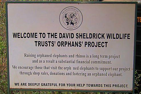 David Sheldrick Wildlife Project (1)