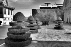 Koninklijk Paleis (18)