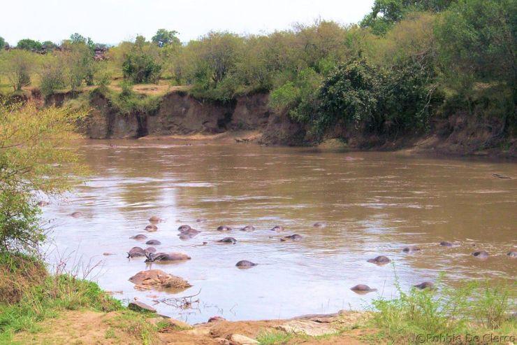Masai Mara National Reserve (107)