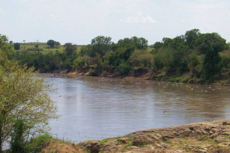 Masai Mara National Reserve (108)
