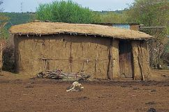 Masai village (4)