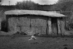 Masai village (5)