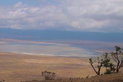 Ngorongoro (4)