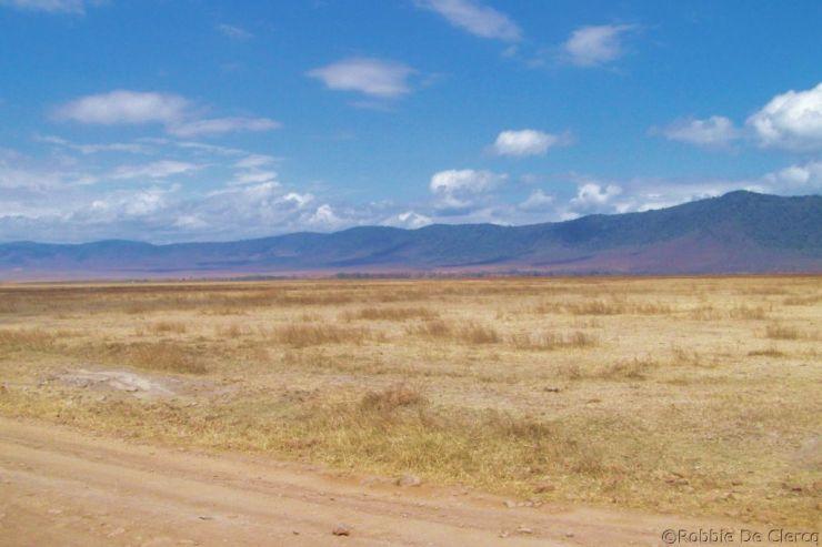 Ngorongoro (56)