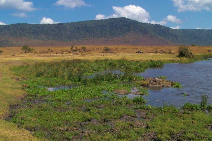 Ngorongoro (63)