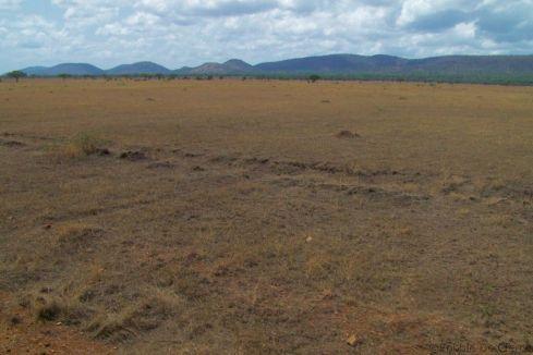 Serengeti National Park (21)