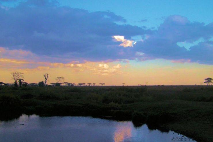 Serengeti National Park (223)