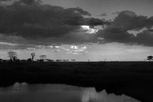 Serengeti National Park (224)