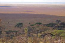 Serengeti National Park (253)