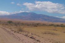 Serengeti National Park (261)