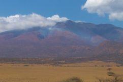 Serengeti National Park (263)