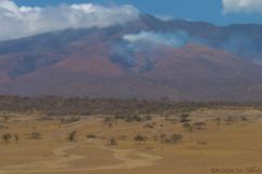 Serengeti National Park (264)