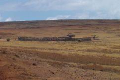 Serengeti National Park (269)