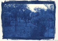 Serengeti National Park (34)