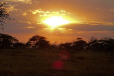 Serengeti National Park (64)