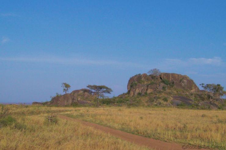 Serengeti National Park (74)