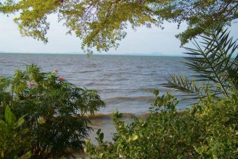 Speke Bay (1)