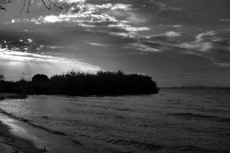 Speke Bay (13)
