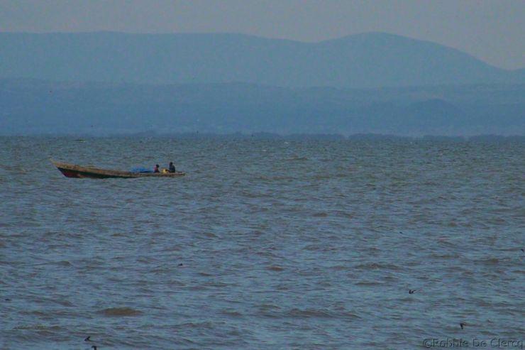 Speke Bay (15)