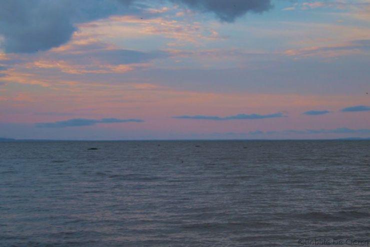 Speke Bay (17)