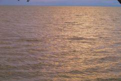 Speke Bay (22)