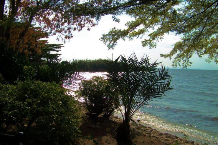 Speke Bay (3)