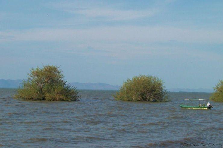 Speke Bay (4)