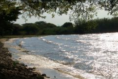 Speke Bay (5)