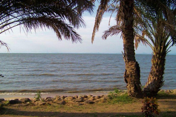 Speke Bay (8)