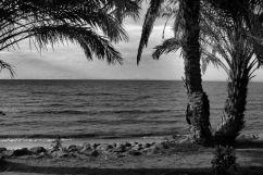 Speke Bay (9)