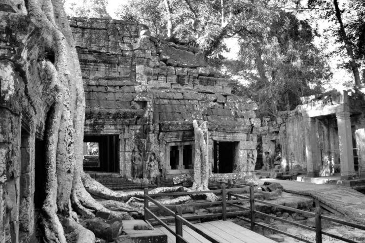 Ta Phrom (10)