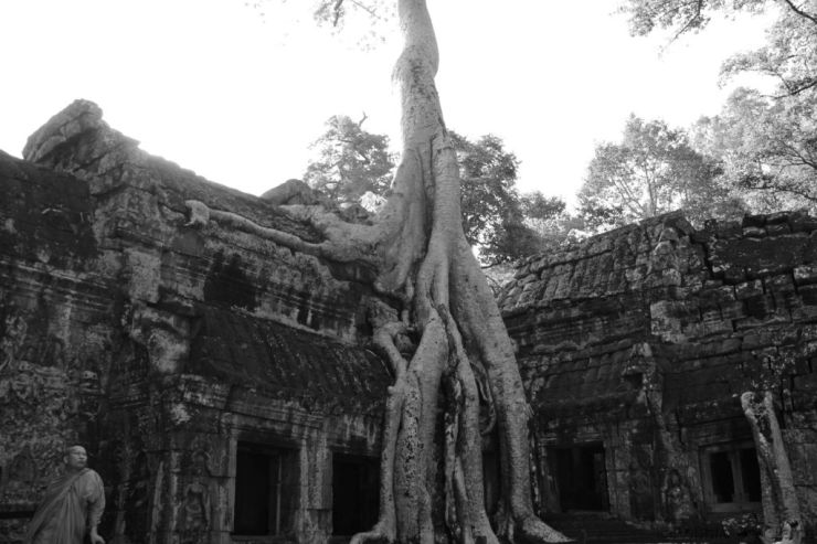 Ta Phrom (13)