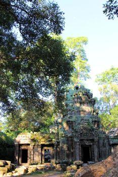Ta Phrom (37)