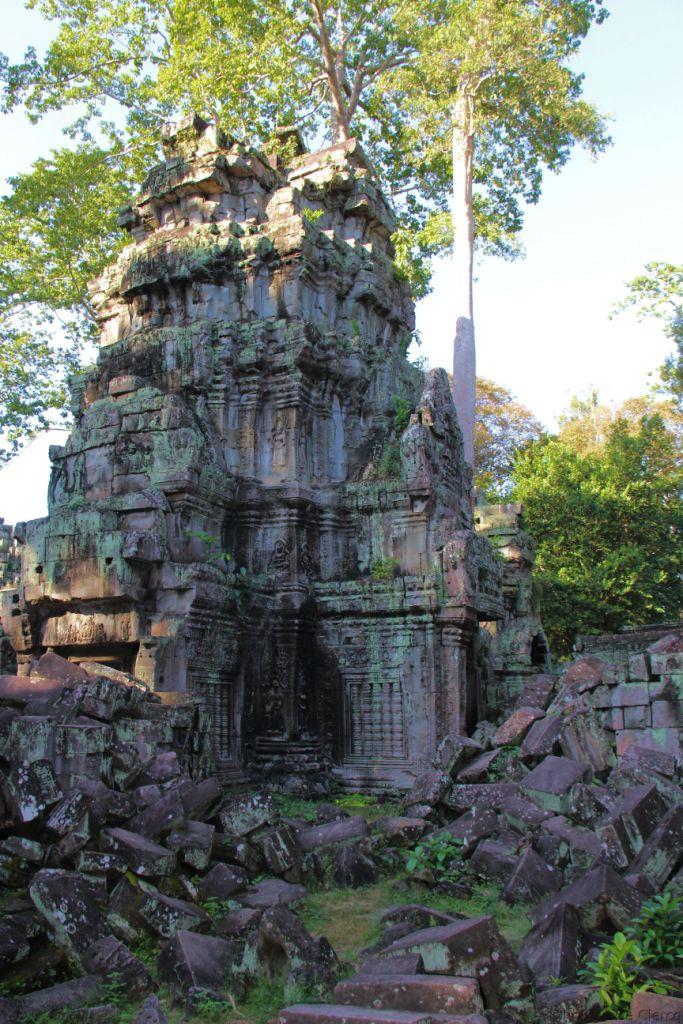 Ta Phrom (41)