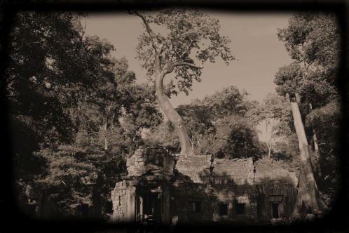Ta Phrom (5)
