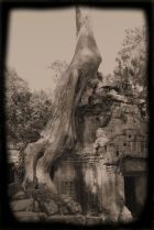 Ta Phrom (57)