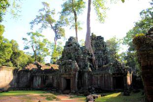 Ta Phrom (63)