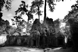 Ta Phrom (64)