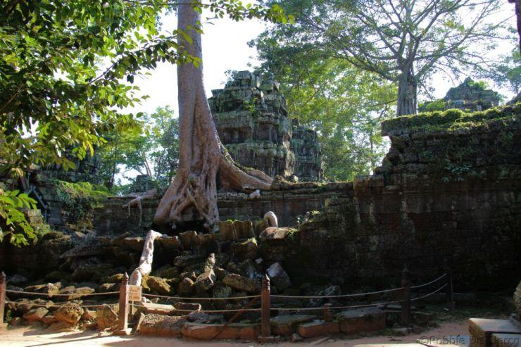 Ta Phrom (65)