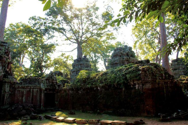 Ta Phrom (74)