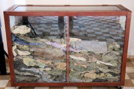 Tuol Sleng (8)