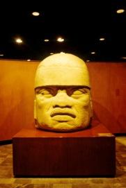 Antropologisch museum 06
