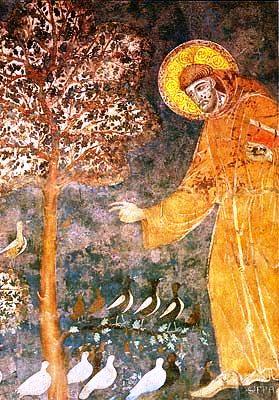 Assisi 13 ( Basiliek - Franciscus predikt tot de vogels)