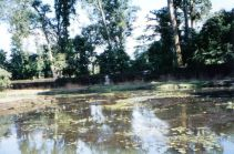Banteay Srei 15