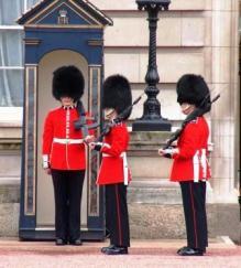 Buckingham Palace 13