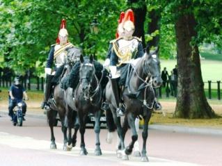 Buckingham Palace 16